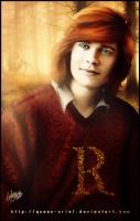 Rupert Pevensie