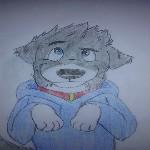 wolf_dog