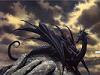 MidnightDragon