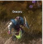 Dracoru