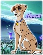 Shanii