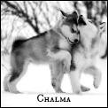 Chalma