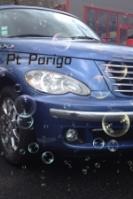 Ptparigo