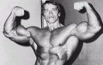 Arnold33