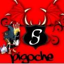 Pigoche