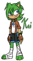 Kai The Hedgehog