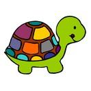La tortue du ptit bois