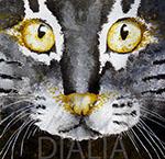 Dialia