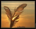 robertto