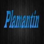 plamantin_gaming