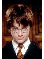Rogue Potter