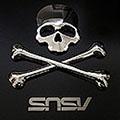 snsv6502