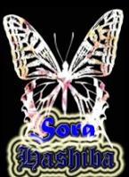 Hashiba_Sora
