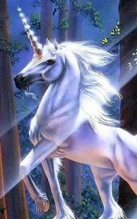 Jolly Licorn