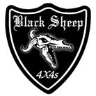 Black Sheep 4x4s
