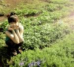 AnHung
