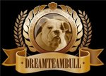DREAMTEAMBULL