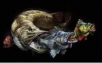 Nicofish74