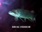 brok-terror