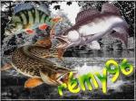 remy96