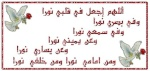 الأستاذ محمد علي