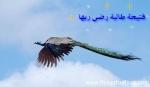 منتدى الرياضة العربية 32665-46