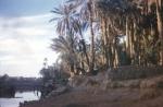 بنت الصحراء08