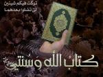 محمد السر حسين