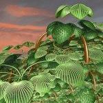 ~Autres plantes humifères~ 574-46