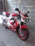 edson motoca