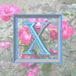xenex