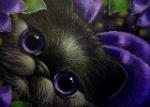VioletQaia