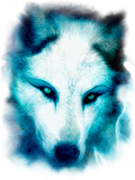 The_Wolves