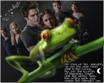 lizthetwilightfrog