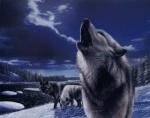 worwolf1
