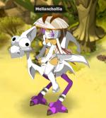 Mellanchollia