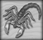 CSP_scorpion