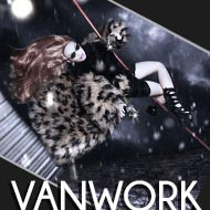 Vanwork