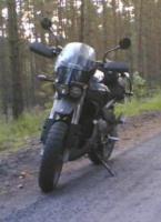 stef999