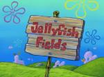 Jellyfish_Fields