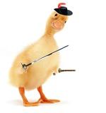 ducksketeer