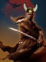 The Nordic Ninja