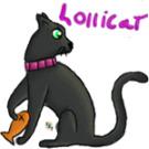 lollicat