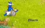 Elliacto