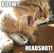 Boom ! Headshot !