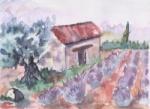 lili.vanille