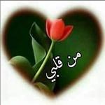 ابن العرب