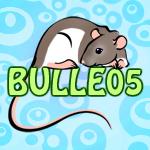 bulle05