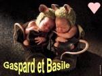 Gasparette