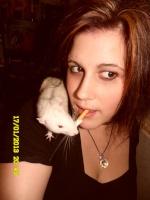Les ratcourcis